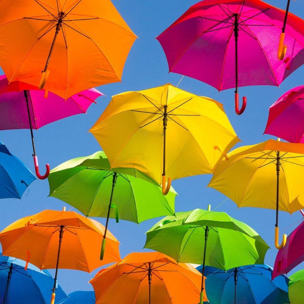 carrington umbrella ltd